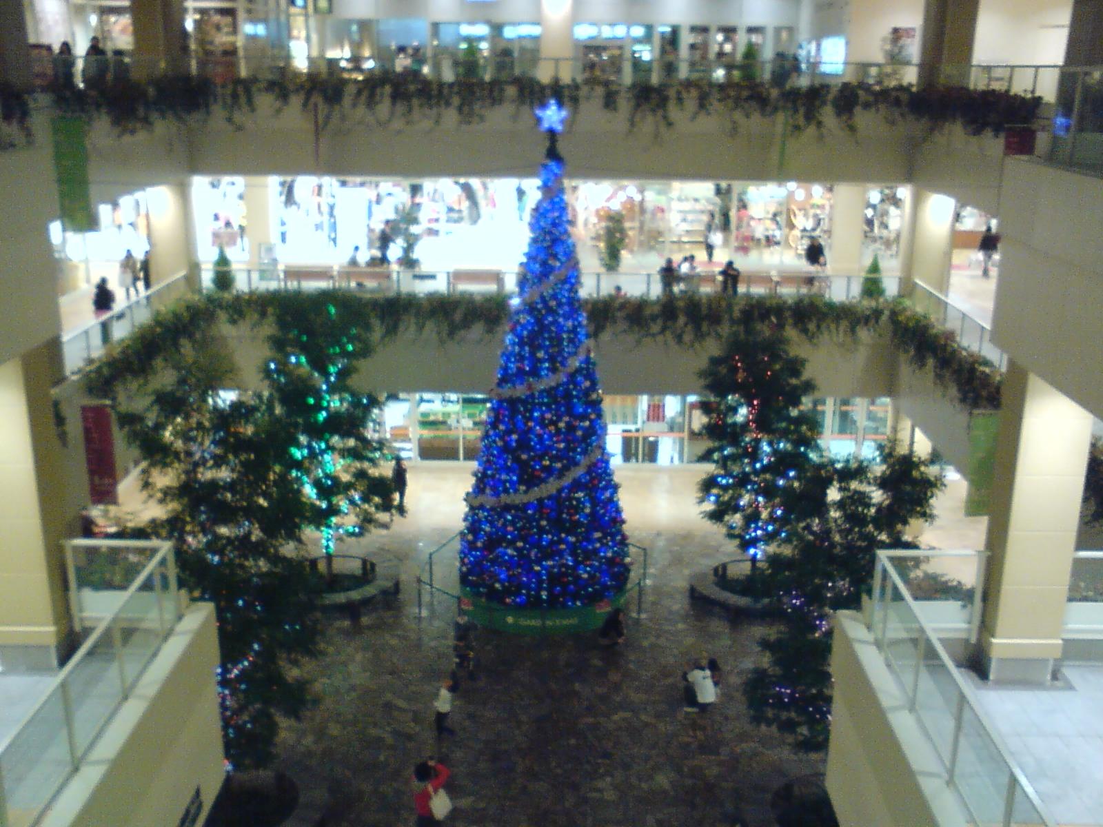 こちらもクリスマスですな